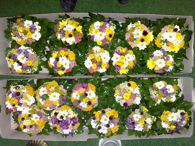 Cvećara Prolećni Cvet