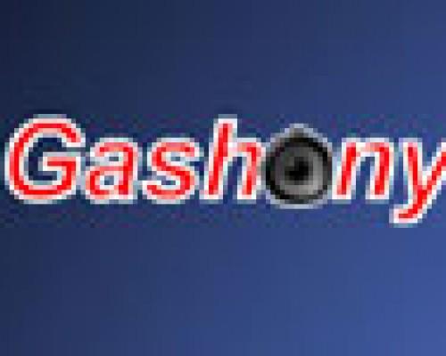 Iznajmljivanje ozvučenja Gashony