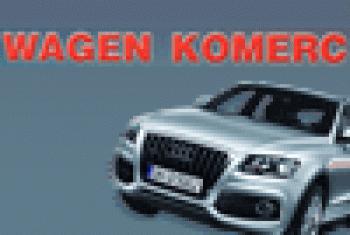Auto delovi Wagen Komerc