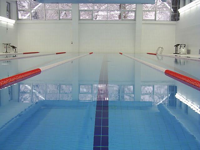 Plivački klub Barakuda