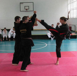 Borilačke veštine Hapkikwan International