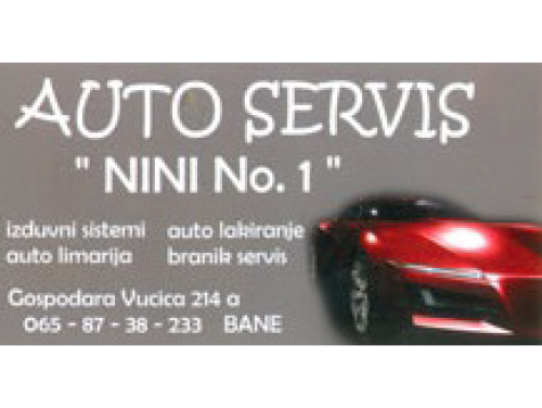 Auto servis Nini No1