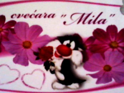 Cvećara Mila