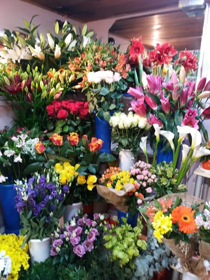 Cvećara April