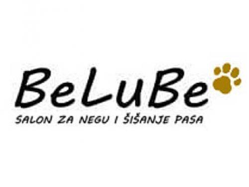Frizerski salon za kuce Belube