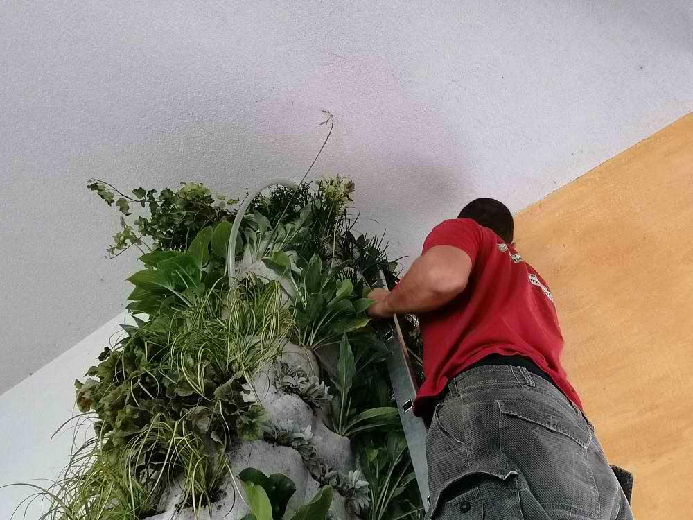 Živeti sa biljkama
